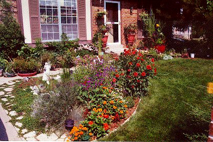 1000 images about front yard no lawn on pinterest for Landscaping rocks myrtle beach